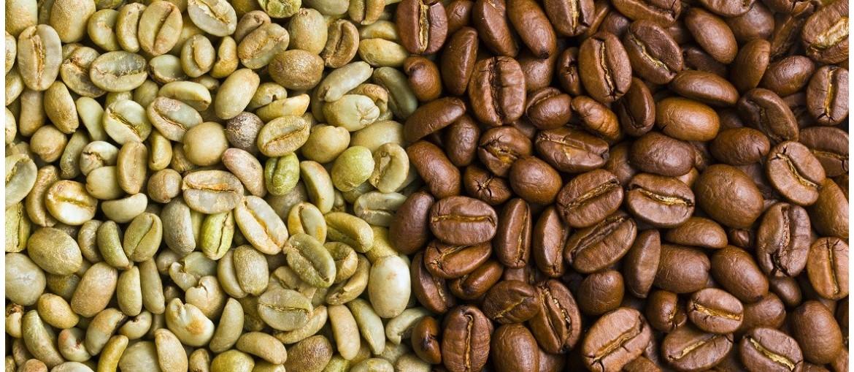 Káva B2B