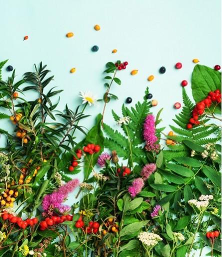 Natural & Alternative Remedies