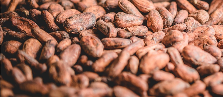 Kakao B2B